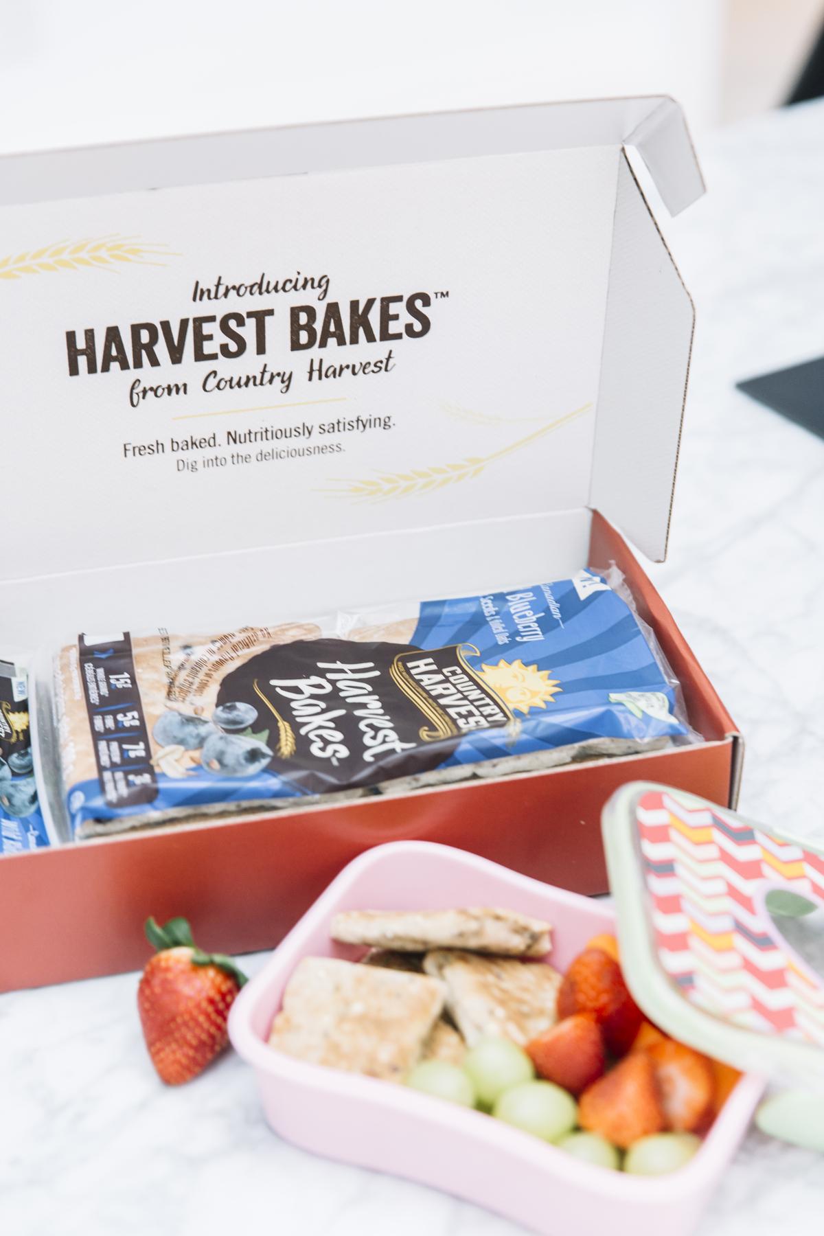 harvest bakes